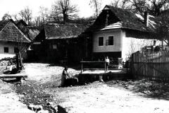 dobova_fotka_domov
